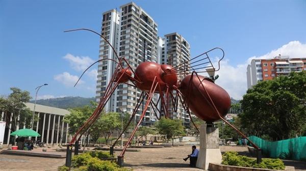 Tại thành phố Bucaramanga, những tác phẩm điêu khắc bằng kim loại khổng lồ đã được dựng lên để tỏ lòng tôn kính với loài côn trùng này. Nguồn ảnh: BBC.