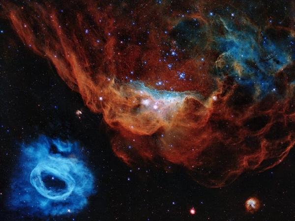 Tinh vân khổng lồ NGC 2014 và hàng xóm của nó, NGC 2020, tạo thành một