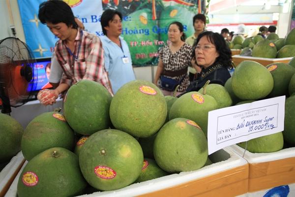 Cục BVTV đang xúc tiến mở cửa thị trường Mỹ, Hàn Quốc, New Zealand, Ấn Độ, Đài Loan đối với trái bưởi. Ảnh: QH