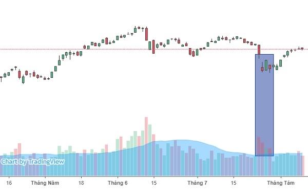 Trong 2 phiên giảm điểm mạnh hồi cuối tháng 7, lực cầu của nhà đầu tư khá lớn. Ảnh: FireAnt.