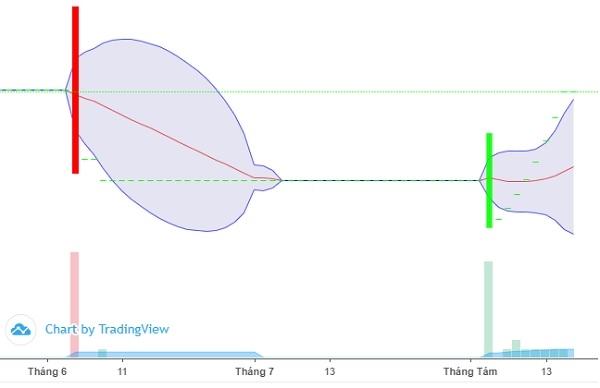 Khối lượng giao dịch của cổ phiếu DTN khá thấp, chỉ khoảng vài trăm cổ phiếu mỗi phiên. Ảnh: FireAnt.