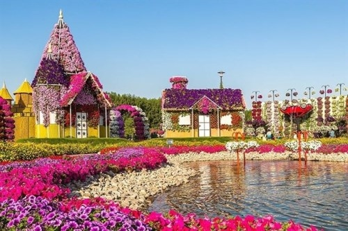 The Da Lat Flower Festival is a cultural and tourism event which is held every two years. In 2019, the Festival attracted more than 220,000 visitors.