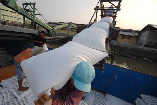 Đã qua thời Việt Nam xuất khẩu gạo lấy số lượng làm chủ lực, bởi nhu cầu của người tiêu dùng trên thị trường đã thay đổi rất nhiều. Ảnh: Lê Hoàng Vũ