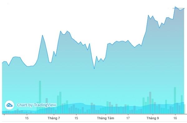 Diễn biến giá cổ phiếu PET trên thị trường. Ảnh: FireAnt.