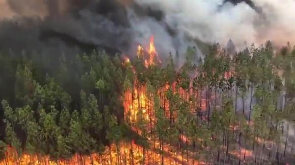 Báo cáo cũng cảnh báo hành vi đốt lửa ở Úc đang trở nên phổ biến và gây nhiều rủi ro hơn. Ảnh: The Washington Post.