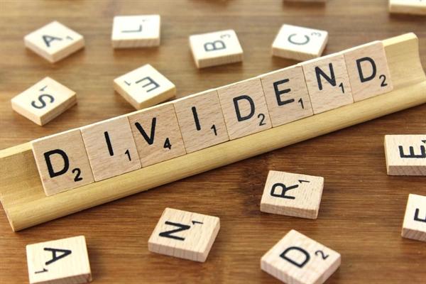 Những chỉ tiêu liên quan đến cổ tức, giá trị sổ sách, Ảnh: Investopedia.