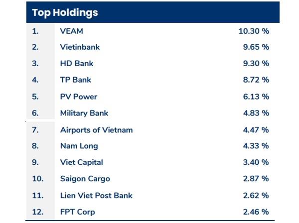12 cổ phiếu chiếm tỉ trọng cao nhất trong danh mục của quỹ tại thời điểm cuối tháng 10.2020.