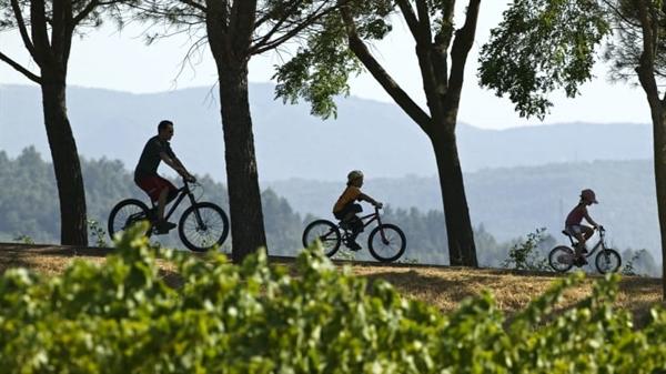 Có rất nhiều tuyến đường đạp xe ở Provence, Pháp cung cấp nhiều cách cho khách du lịch khám phá cảnh đẹp. Ảnh: Photo&Co.