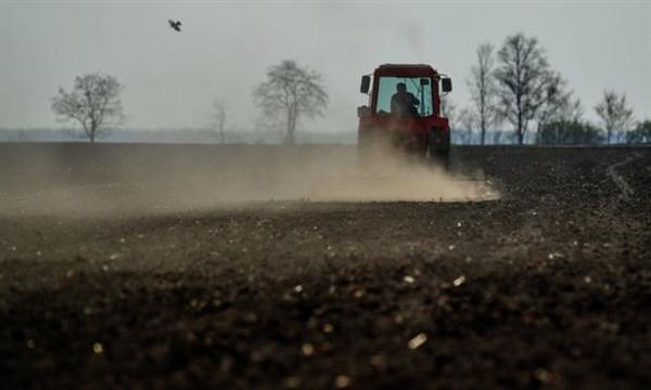 Các nhà khoa học mô tả đất giống như lớp da của thế giới sống, quan trọng nhưng mỏng và dễ bị phá hủy do thâm canh, phá rừng và ô nhiễm. Ảnh: EPA.