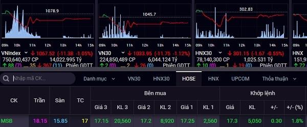 MSB là một trong số ít các cổ phiếu có thể giữ được sắc xanh trong phiên giao dịch 24.12. Ảnh: Bảng giá của SSI.