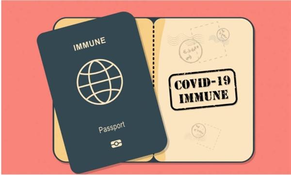 """WHO phản đối ý tưởng """"Hộ chiếu vaccine COVID-19"""". Ảnh: Schengenvisainfo.com."""
