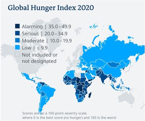 Chỉ số nạn đói toàn cầu năm 2020. Ảnh: Deutsche Welthungerhilfe.
