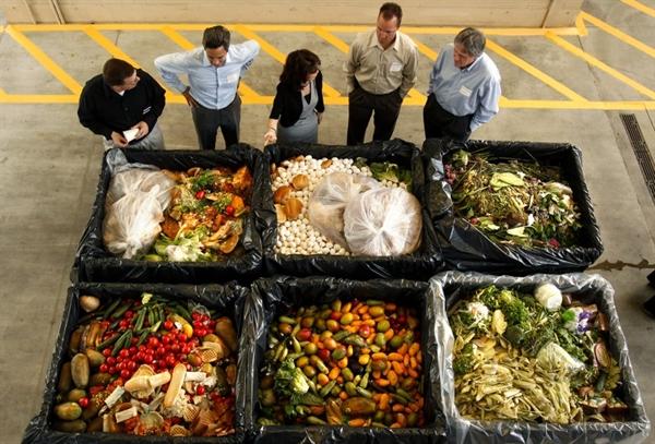 Mỗi năm, hơn 19.5 triệu tấn (43 tỉ pound) thực phẩm từ các cửa hàng tạp hóa bị vứt bỏ. Ảnh: The Times.