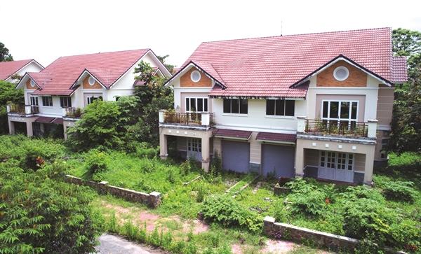 Dự án bị bỏ hoang nhiều năm ở Nhơn Trạch. Ảnh: Hồng Lam