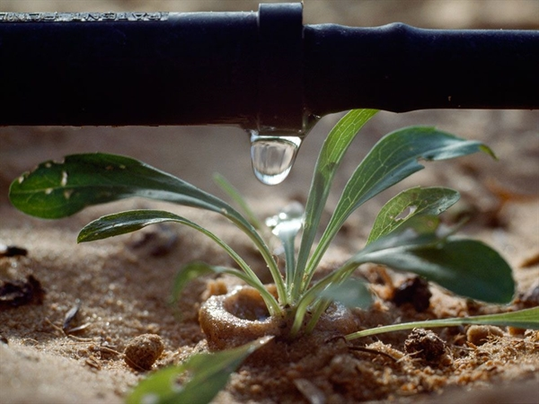 Công nghệ giúp bảo vệ hành tinh. Ảnh: National Geographic.