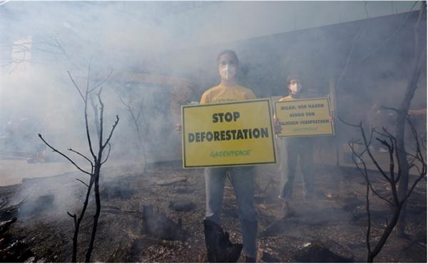 Các nhà hoạt động của tổ chức Hòa bình xanh ở Vien, Áo tổ chức cuộc biểu tình phản đối nạn phá rừng nhiệt đới Amazon ngày 5.5. Ảnh: Reuters.