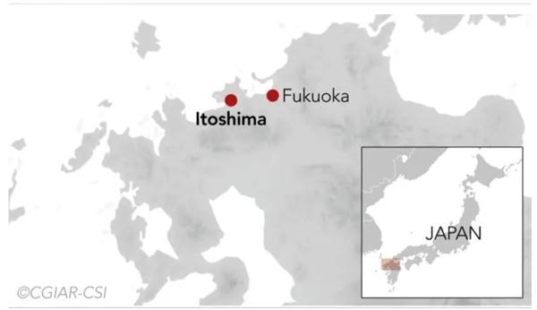 Chỉ cách Fukuoka 30 phút lái xe, Itoshima có thêm lợi thế là nằm gần sân bay quốc tế lớn. Ảnh: CGIAR-CSI.