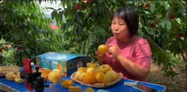 Cô Guo Chengcheng bán đào trong buổi livestream ngày 2.7. Ảnh: Bloomberg.