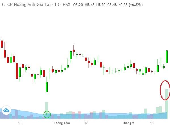 Tính đến 13h30 phiên giao dịch 22/9, cổ phiếu HAG đang tăng kịch trần với thanh khoản kỷ lục hơn 17,9 triệu cổ phiếu, trong khi trung bình 10 ngày qua con số này chỉ hơn 4 triệu cổ phiếu/phiên. Ảnh: FireAnt.